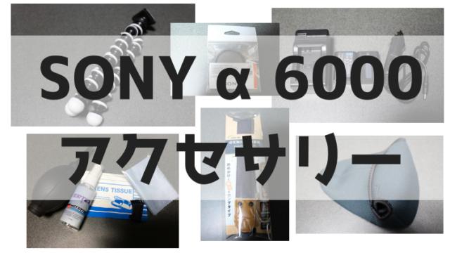 ソニーα6000アクセサリー