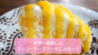 チェンマイマンゴーチーズケーキ