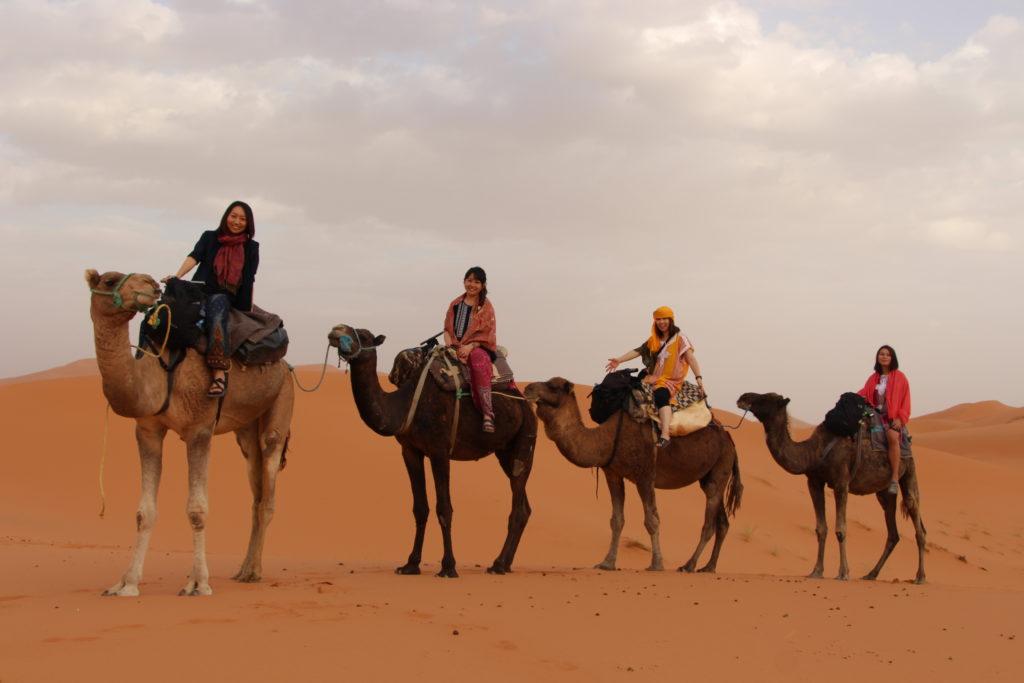 サハラ砂漠 朝日